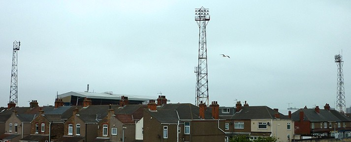 Seagull over Blundell Park